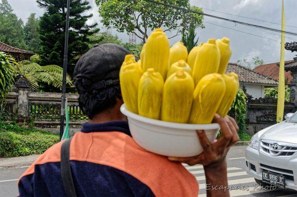 Candi Kuning - vendeur ambulant