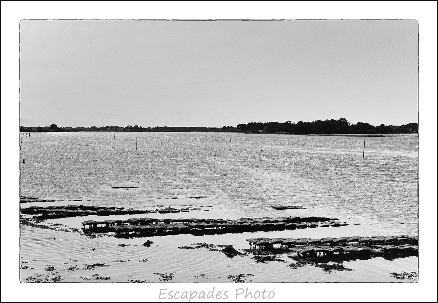 Ria d'Étel - Parc à huîtres au bout du chemin de Cadoudal