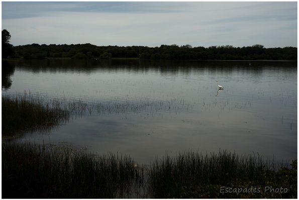 Priziac, le lac du Bel Air le bien nommé