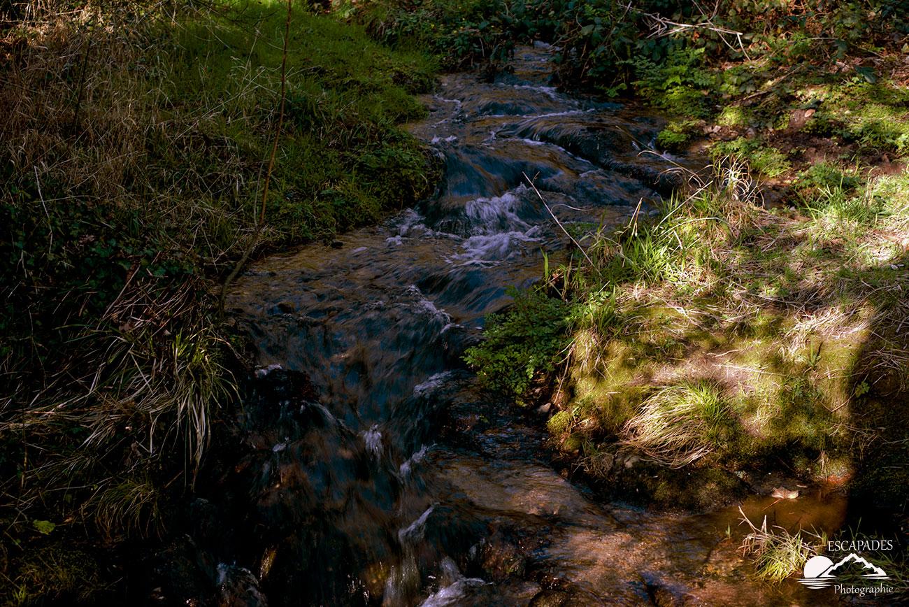 Le ruisseau du Fourden traverse des zones marécageuses